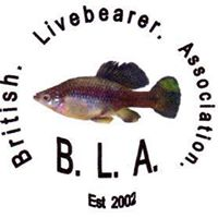 British Livebearer Association
